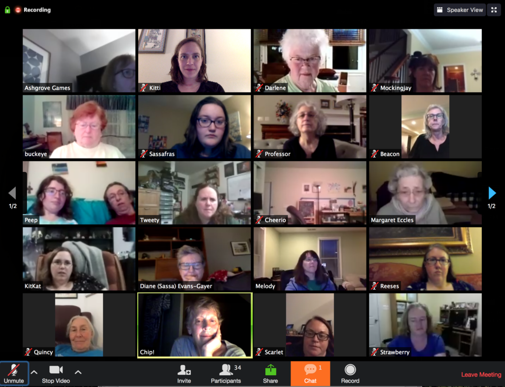 screenshot of multiple attendees at a virtual task group meeting