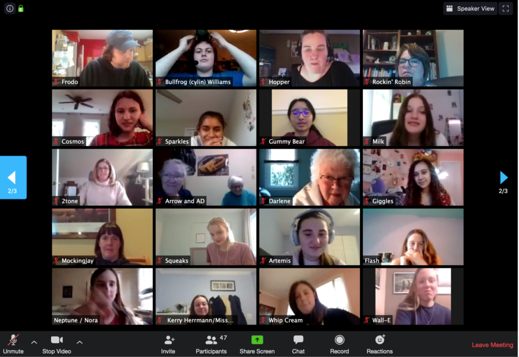 screenshot of zoom meeting with lots of people's headshots