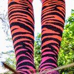 pink zebra knee socks