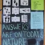 "chalkboard reading ""Match the tracks"" and showing numerous types of wildlife tracks"